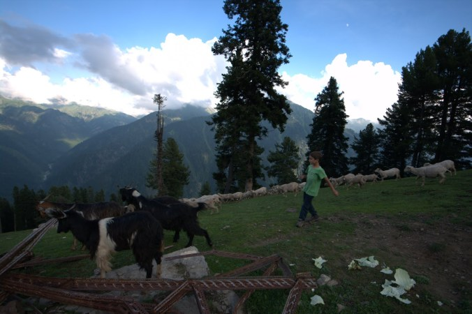 Trekking in Himalaya with Armand